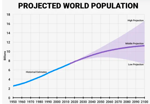 Projected World Population